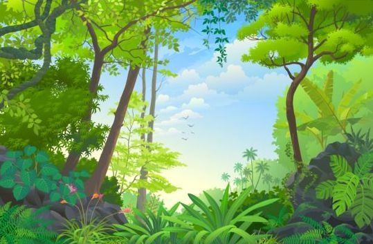 Beautiful Jungle Landscape Vector Graphics 07 Vector