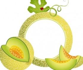 Cantaloupe melon photo frame vector