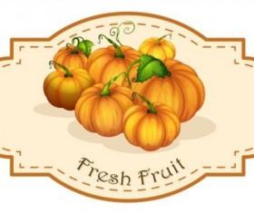 Fresh fruit vintage label vector material