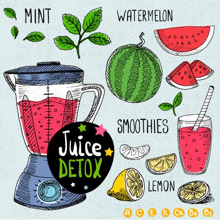 Juice detox hand drawn vector material 06