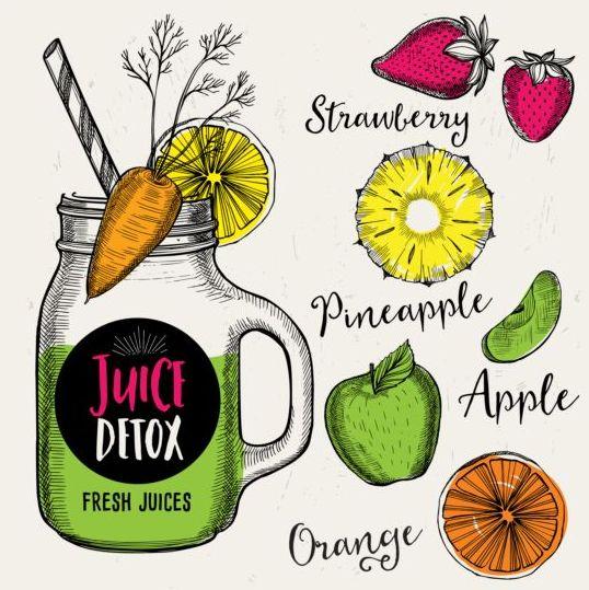 Juice detox hand drawn vector material 21