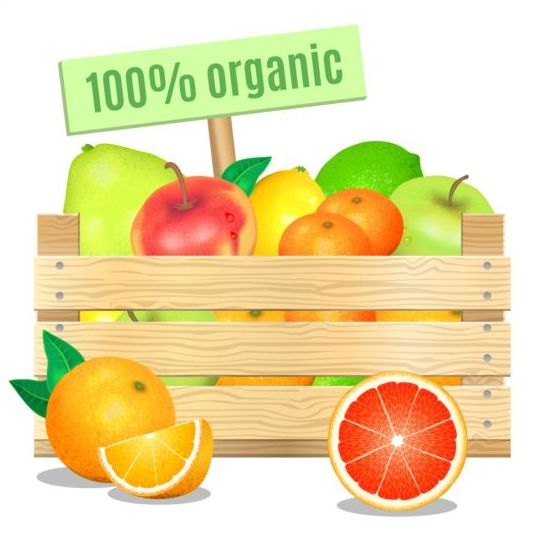 Organic fruit vector design - Vector Food free download: freedesignfile.com/248942-organic-fruit-vector-design
