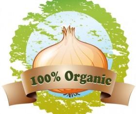 Organic onion vector label