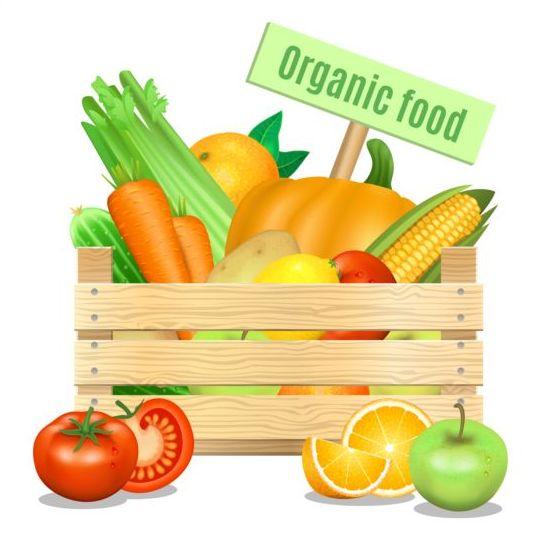 Organic vagetables poster vector design 01