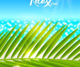 Beaches and palm with shell summer background vector