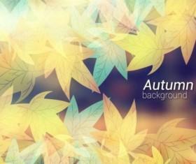 Beautiful autumn leaves background art vector