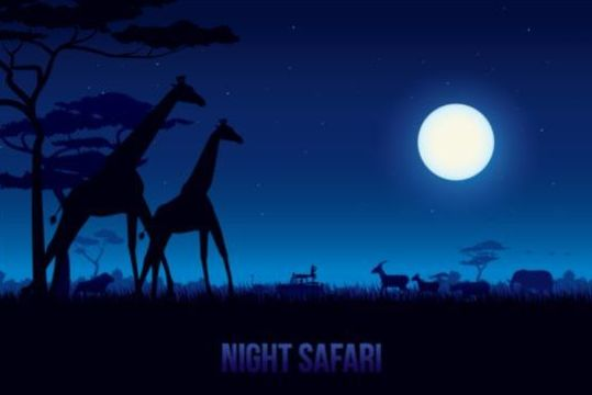 Bight safari landscape beautiful vector 02