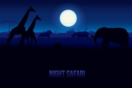 Bight safari landscape beautiful vector 06
