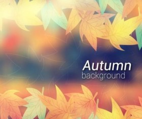 Colored autumn leaves with blurred background vector 05