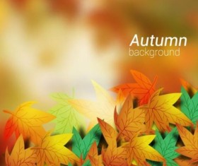 Colored autumn leaves with blurred background vector 06