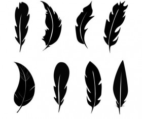 Feather Vector For Free Download