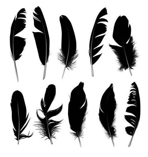 Feather silhouetter vectors set 06