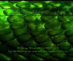 Reptile Skin PS brushes