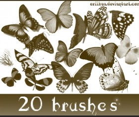 20 Kind butterflies PS Brushes