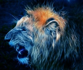 Abstract Artistic lion and black background 05