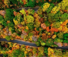 Aerial photography Fall background