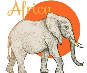 Africa elephant vector
