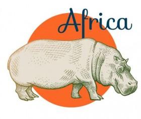 Africa hippo vector