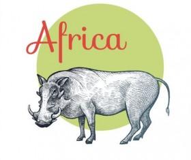 Africa rhinoceros vector 02