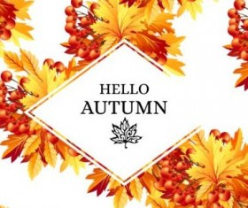 Autumn fructification with white background vector