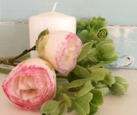 Beautiful Camellia flowers and candles Stock Photo 2