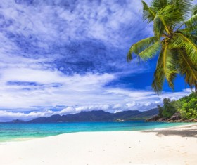 Beautiful blue sky, white clouds, sandy beach, coconut trees, mountains