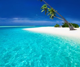 Beautiful blue sky with coconut trees on the beach