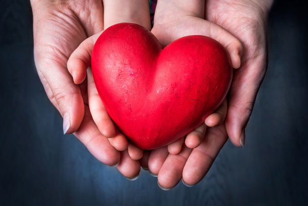Big and small hands holding a red heart shaped Stock Photo