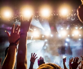 Cheering crowd at a rock concert HD picture 02