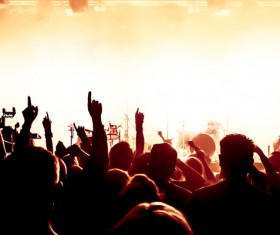 Cheering crowd at a rock concert HD picture 04
