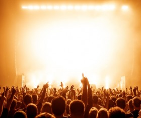 Cheering crowd at a rock concert HD picture 05