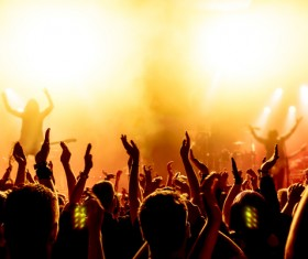 Cheering crowd at a rock concert HD picture 07