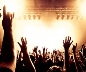 Cheering crowd at a rock concert HD picture 09