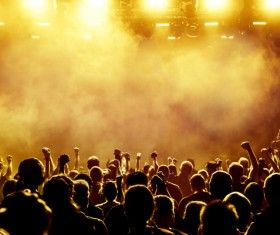 Cheering crowd at a rock concert HD picture 11