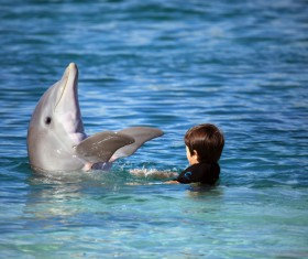 Children playing with the dolphins in the water