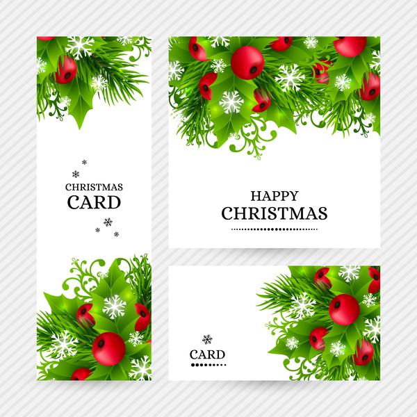 Christmas holly cards design vector 06