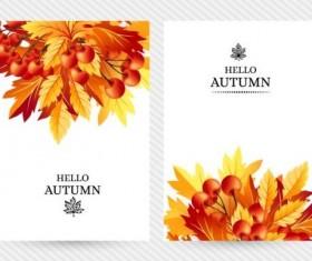 Cover brochure autumn style vector