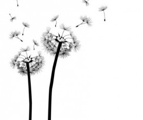 Dandelion black vector illustration 01