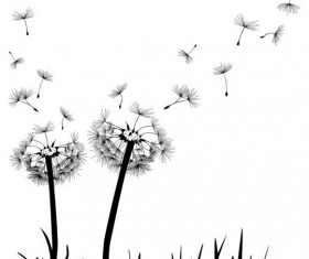 Dandelion black vector illustration 03