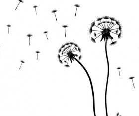 Dandelion black vector illustration 04