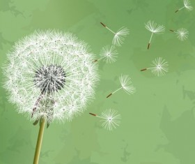 Dandelion with green grunge background vector 02