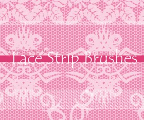 Fansy Lace PS Brushes