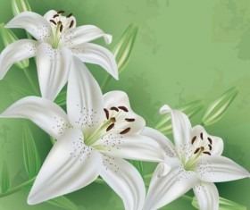 Flower lily with green grunge background vector 01