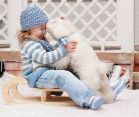 Girl on a sled with a puppy close-up Stock Photo 01