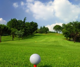 Golf ball on green grass with golf course background 01