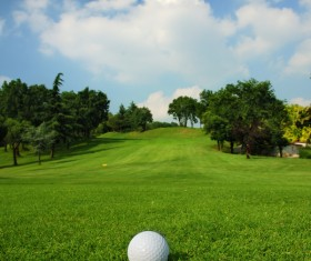 Golf ball on green grass with golf course background 02