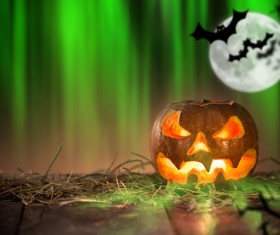 Green background flying bat and pumpkin lights HD picture 01