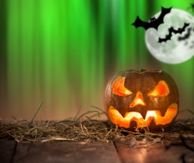 Green background flying bat and pumpkin lights HD picture 02