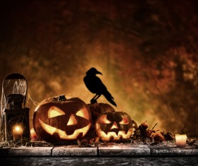 Halloween pumpkin on old wooden table with crows