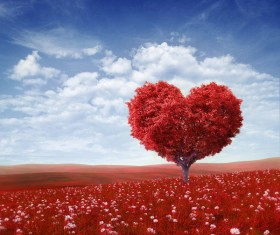 Heart shape tree with red leaves on red flower field